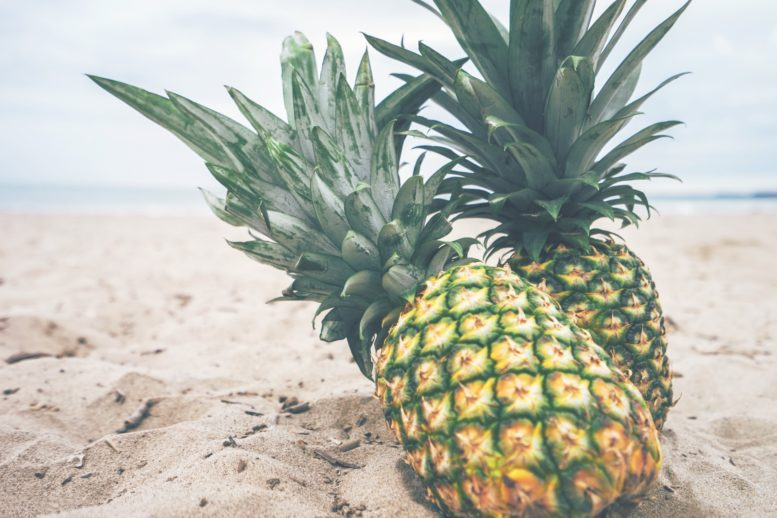 ananas