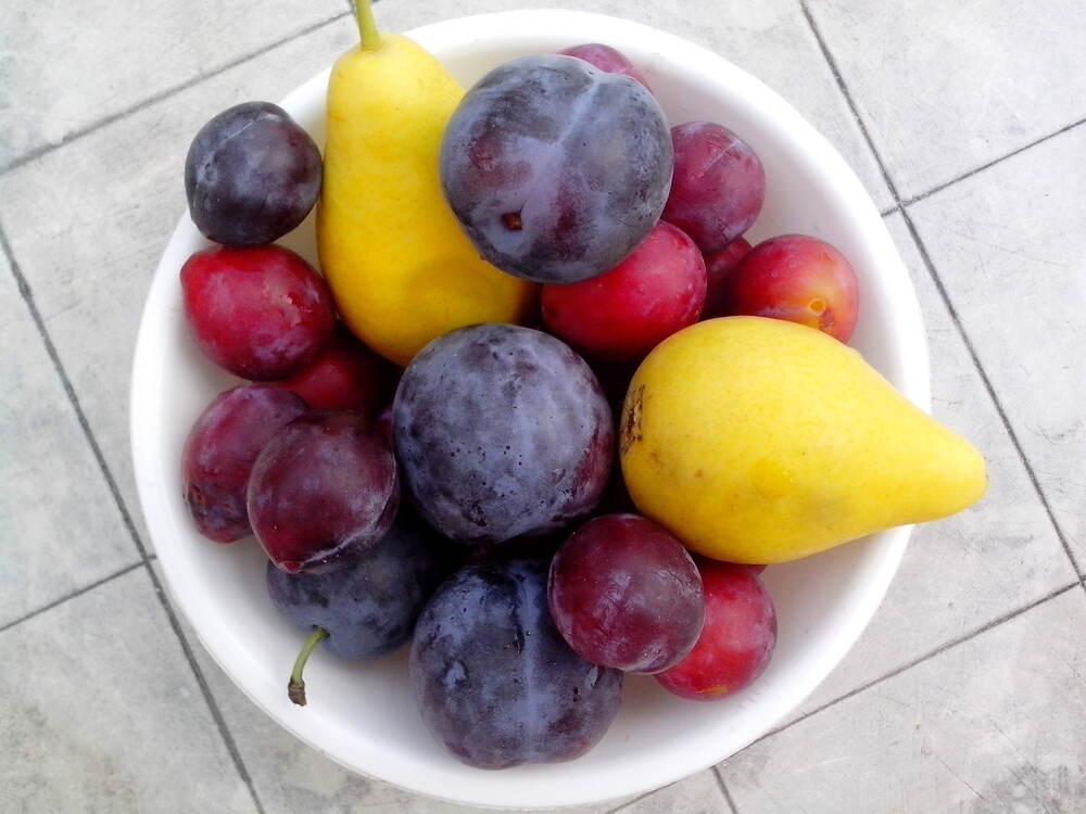 pruimen met peren
